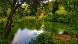 Lodgeside_Lake_2